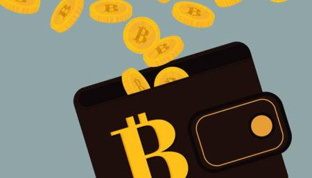 Guida introduttiva ai portafogli Bitcoin – quale scegliere